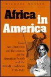 Africa in America: Slave Acculturation and Resistance in the American South and the British Caribbean, 1736-1831 Michael  Mullin