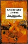 Reaching for the Sun: How Plants Work  by  John King