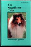 Magnificent Collie  by  Patricia Starkweather