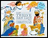 The Twelve New Days of Christmas  by  Bonnie Johnson Fite