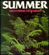 Summer  by  Louis Santrey