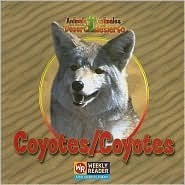 Coyotes/Coyotes  by  JoAnn Early Macken