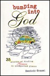 Bumping into God: 35 Stories of Finding Grace in Unexpected Places  by  Dominic Grassi