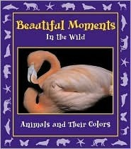 Beautiful Moments in the Wild: Animals and Their Colors  by  Stephanie Maze