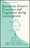Boundaries Between Promotion and Progression During Carcinogenesis Oscar Sudilovsky