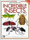 Incredible Insects Sandra Stotsky