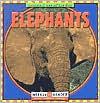 Elephants  by  JoAnn Early Macken
