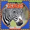 Zebras  by  JoAnn Early Macken