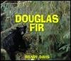 Douglas Fir  by  Wendy Davis