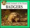 Badgers  by  Lynn M. Stone
