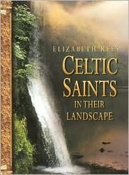 Celtic Saints in Their Landscape  by  Elizabeth Rees