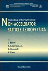 Non-Accelerator Particle Astrophysics: Proceedings of the Fourth School : International Centre for Theoretical Physics, Trieste, Italy 17-28 July 1995 E. Bellotti
