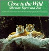 Close to the Wild: Siberian Tigers in a Zoo  by  Thomas Cajacob