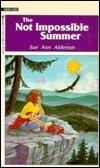 Not Impossible Summer  by  Sue Ann Alderson