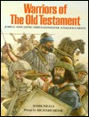 Warriors of the Old Testament  by  Mark Healy