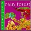 Rainforest  by  Penny Clarke