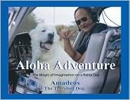 Aloha Adventure: The Magic Of Imagination On A Rainy Day  by  Amadeus