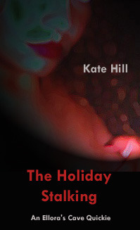 The Holiday Stalking (Ancient Blood, #7) Kate Hill