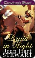 Druid in Flight Jean Hart Stewart