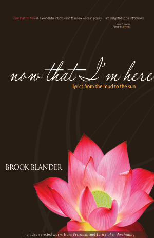 now that Im here: lyrics from the mud to the sun  by  Brook Blander