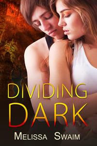 Dividing Dark  by  Melissa Swaim