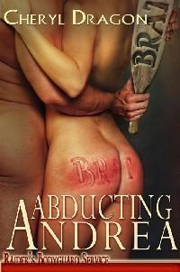 Abducting Andrea (Raiders Bodyguard Service #1) Cheryl Dragon