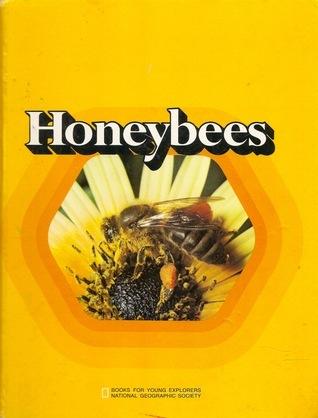 Honeybees  by  Jane Lecht