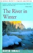 The River In Winter David  Small