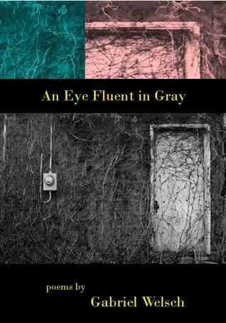 An Eye Fluent in Gray (Seven Kitchens Editors Series #9) Gabriel Welsch