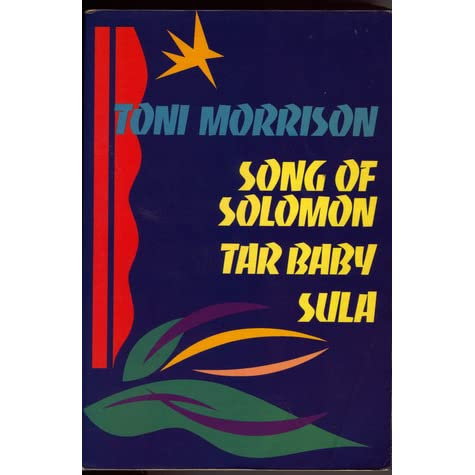 "toni morrisons sula unhealthy relationship of sula It is titled ""strands of feminism in toni morrison""sparadise, sula, and the bluest eye"" chapter 4 shares some semblance with chapter 3, it is titled ""alice walker""s portrait of women in the color purple , in love and trouble: stories of black women , and meridian ."