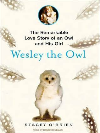 Wesley the Owl: The Remarkable Love Story of an Owl and His Girl Stacey OBrien