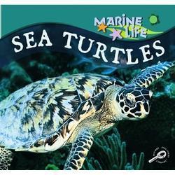 Sea Turtles Lynn M. Stone