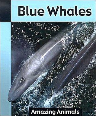 Blue Whales  by  Angela Royston