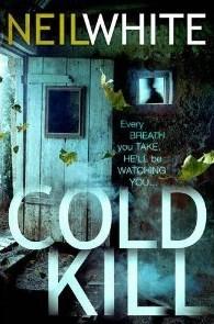 Fallen Idols (DC Laura McGanity, #1) Neil  White