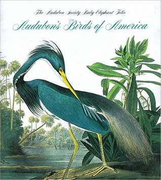 Birds of America: Audubon Society Baby Elephant Folio John James Audubon