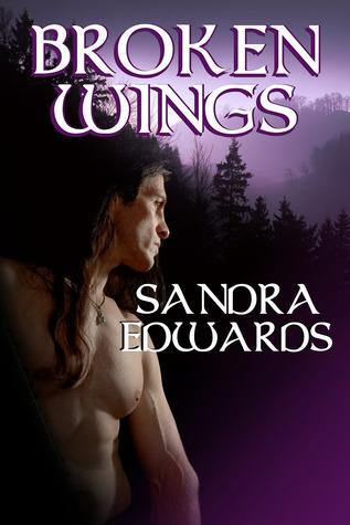 Broken Wings (Soul Searchers, #1)  by  Sandra Edwards