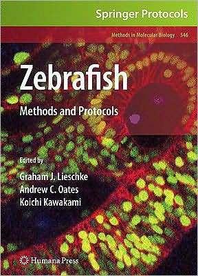 Zebrafish Graham J. Lieschke
