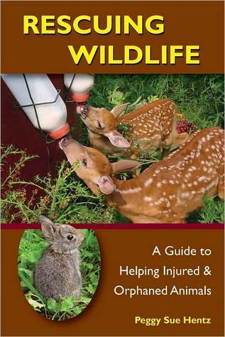 Rescuing Wildlife: A Guide to Helping Injured and Orphaned Animals  by  Peggy Hentz