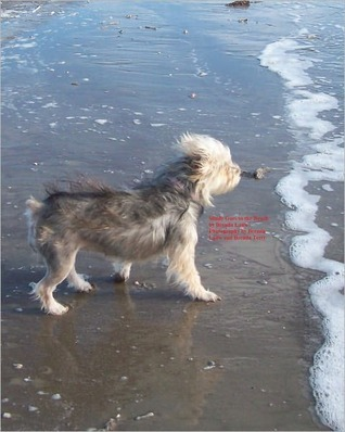 Mindy Goes to the Beach  by  Brenda Lauw