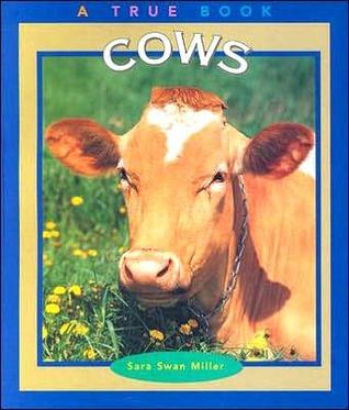 Cows  by  Sara Swan Miller