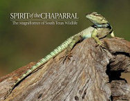 Spirit of the Chaparral: The Magnificence of South Texas Wildlife: The Valley Land Fund Wildlife Photo Contest V  by  Valley Land Fund