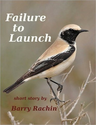 Failure to Launch  by  Barry Rachin