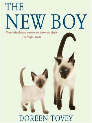 The New Boy  by  Doreen Tovey