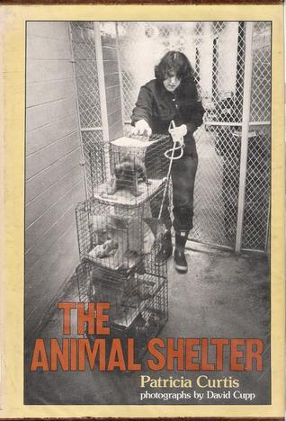 Animal Shelter  by  Patricia Curtis