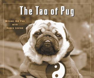The Tao of Pug Wilson the Pug