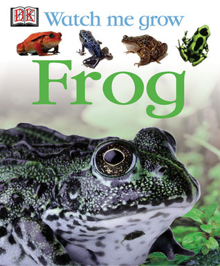 Frog  by  Lisa Magloff