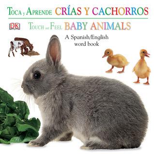 Crias Y Cachorros / Baby Animals Jennifer Quasha