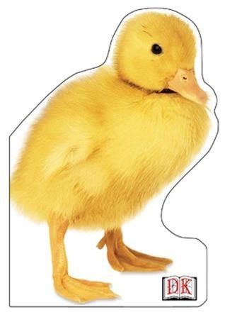 Duckling  by  Nicola Deschamps
