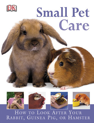 Small Pet Care: HOW TO LOOK AFTER YOUR RABBIT, GUINEA PIG, OR HAMSTER  by  Annabel Blackledge
