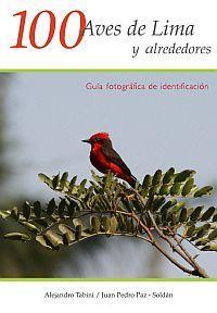100 Aves de Lima y alrededores Alejandro Tabini